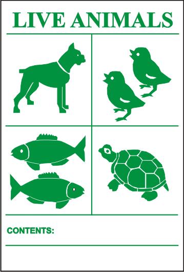LIVE ANIMALS Aufdruck in GRÜN